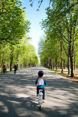 A new bike, a sunny spring afternoon, and a tree-lined park boulevard--what more could you ask for?