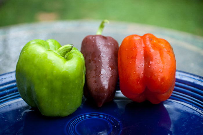 Green, chocolate and 'lipstick red' peppers